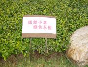 南京天元城花草牌