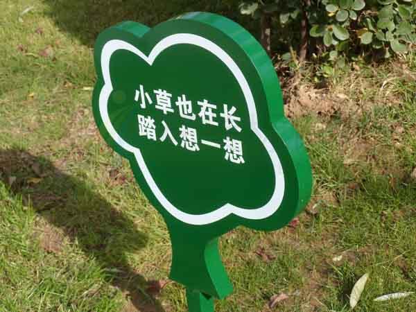 水立方自在城花草牌