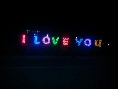 栖霞公园LED造型